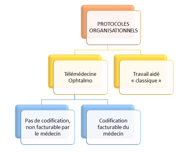protocoles organisationnels